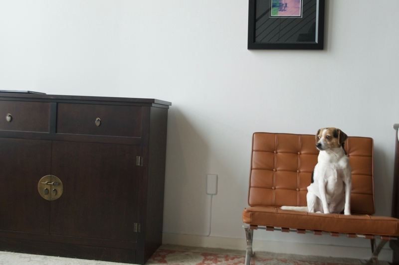 Home decor with the sleek socket - pet endorsed ;-)